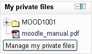 My private files